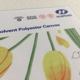 Canvas HF7704 Eco-Solvent Polyester